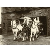 driver_george_welch_bringing_horse_drawn_engine_2_out_of_station_z550